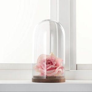 IKEA Home Decor Glass Dome with Wood Base Display